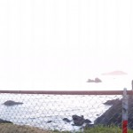 Panoramic of the ocean in Brookings